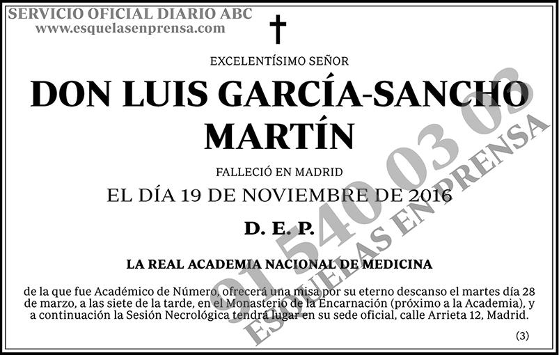 Luis García-Sancho Martín